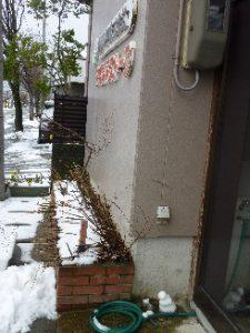 2010雪だるま(小)